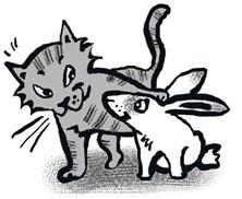 Новый год кота и кролика