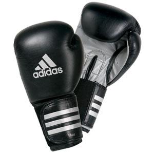 Северодвинские боксеры лучшие в Архангельской области